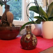 photo clients ashleigh lampe rouge et or