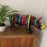 rhinoceraos